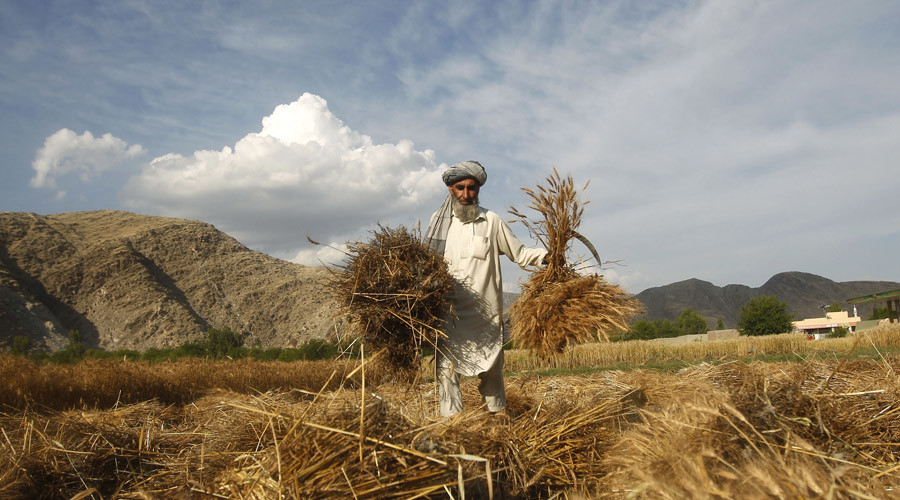 British military illegally held Afghan farmer for months without charge – Court of Appeal