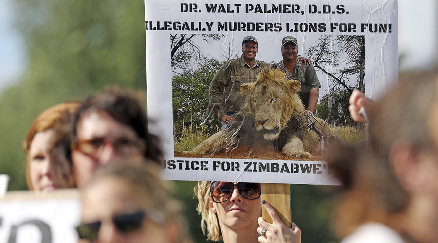 Protesters hold signs during a rally outside the River Bluff Dental clinic against the killing of a famous lion in Zimbabwe, in Bloomington, Minnesota July 29, 2015. © Eric Miller