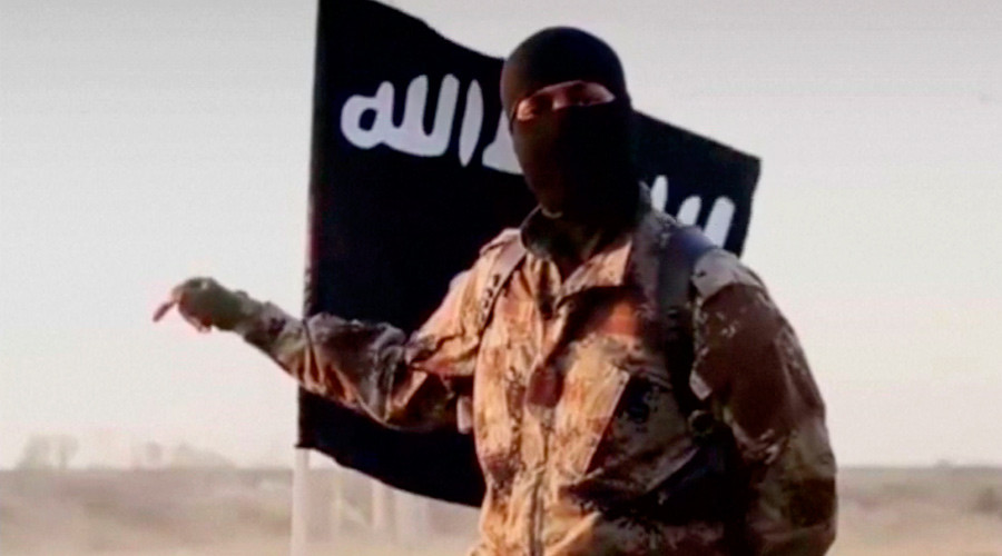'Radicalizing radicals': US military aid landing in hands of ISIS