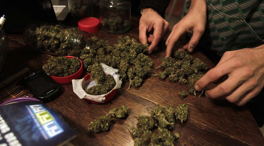 Dried marijuana © Andres Stapff