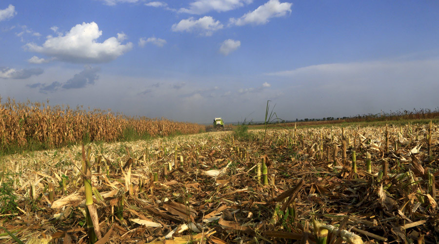 Global food shortages could strike as result of climate change – General Mills
