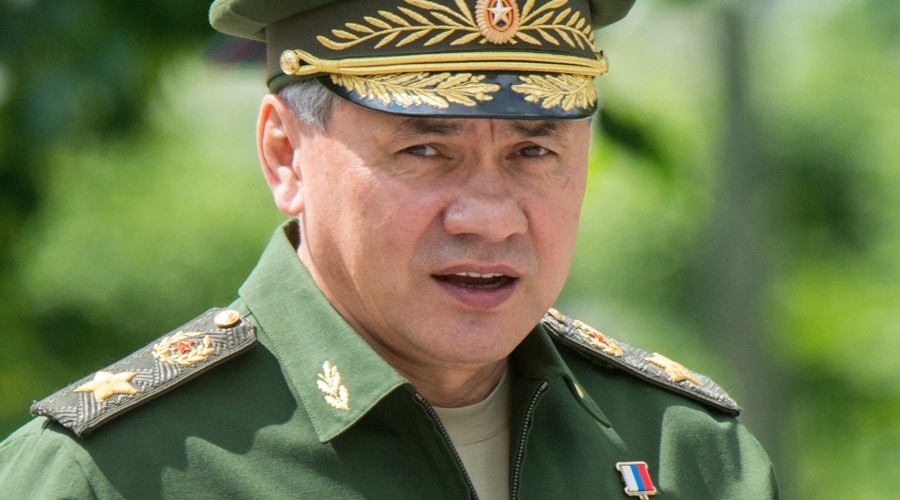 Shoigu praises Russian-Chinese military cooperation as guarantee of world stability