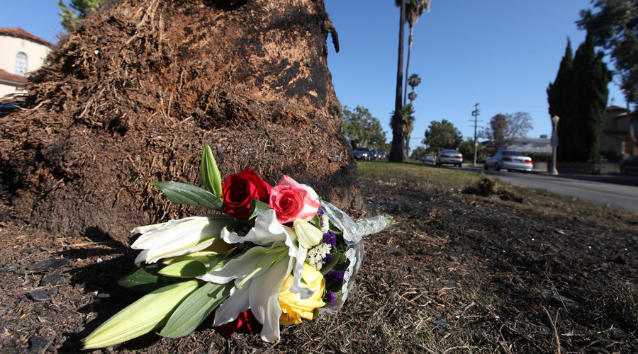 A small bouquet of flowers lies next to a charred tree and glass fragments on Highland Avenue in Los Angeles, California June 18, 2013. Journalist Michael Hastings, died in a car wreck in Los Angeles © Fred Prouser