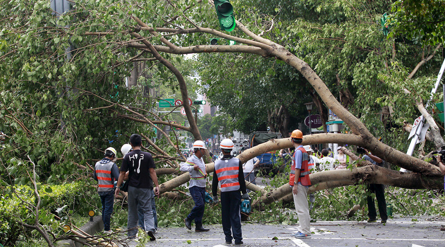 Workers remove trees uprooted by strong winds from Typhoon Dujuan, in Taipei, Taiwan, September 29, 2015. © Pichi Chuang