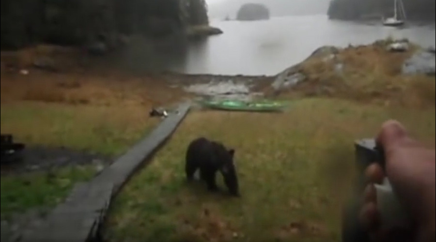 "Alaska bear encounter: ""Thanks for not eating my kayak... hey, stop, it's not even food!"""