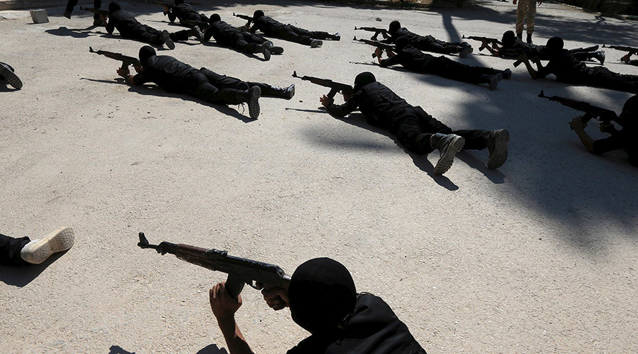 US senator says Washington's $500 million Syrian training program aided terrorists – report