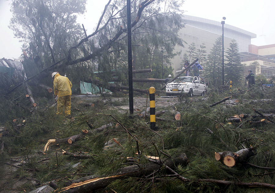Workers clear the road of fallen trees after strong winds brought by Typhoon Koppu battered Baguio city, north of Manila October 19, 2015. © Harley Palangchao