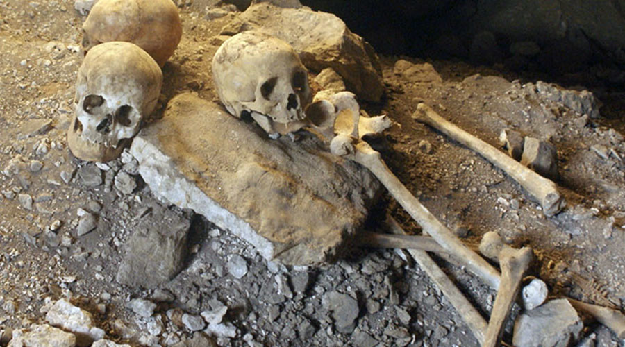 Bones found in Welsh pub could belong to Catholic saint