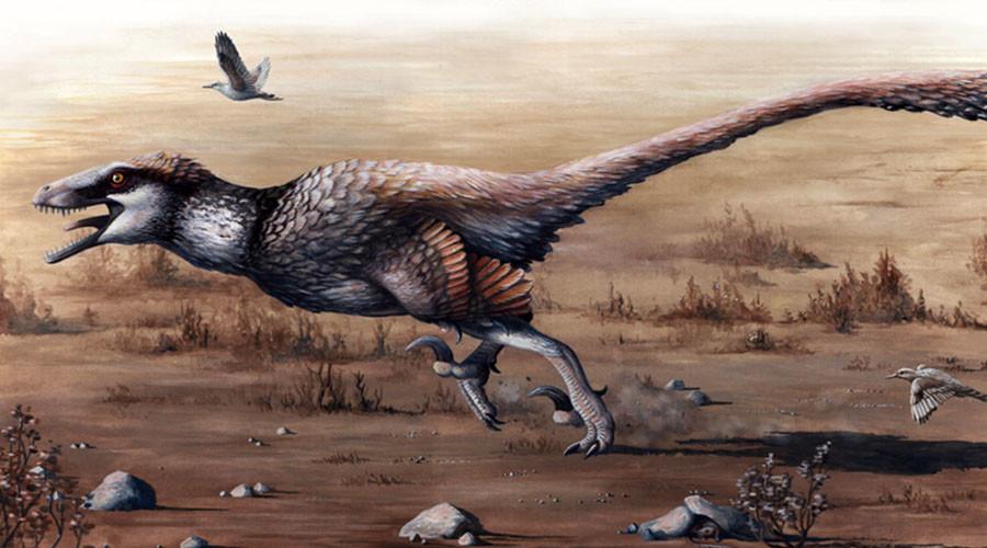 'Ferrari of competitors': 66mln-yo giant raptor unearthed in S. Dakota