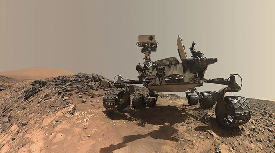 Future Mars rovers may sport fur, scientists suggest