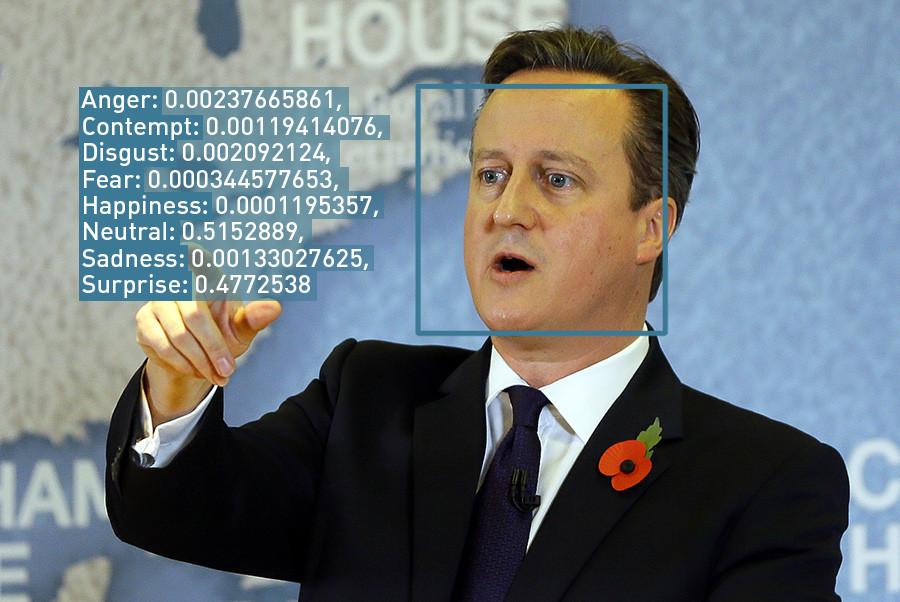 Britain's Prime Minister David Cameron © Kirsty Wigglesworth