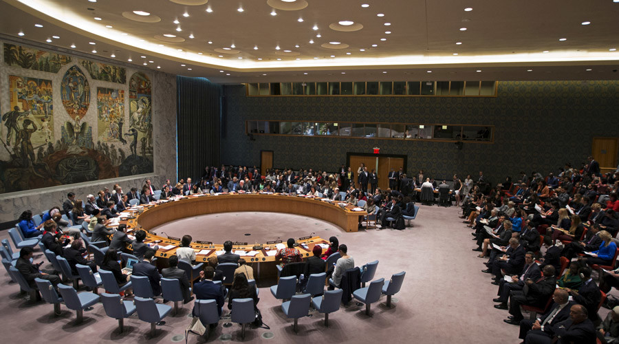 United Nations Security Council © Mike Segar