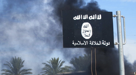 Islamic State pulls in $80mn a month – survey