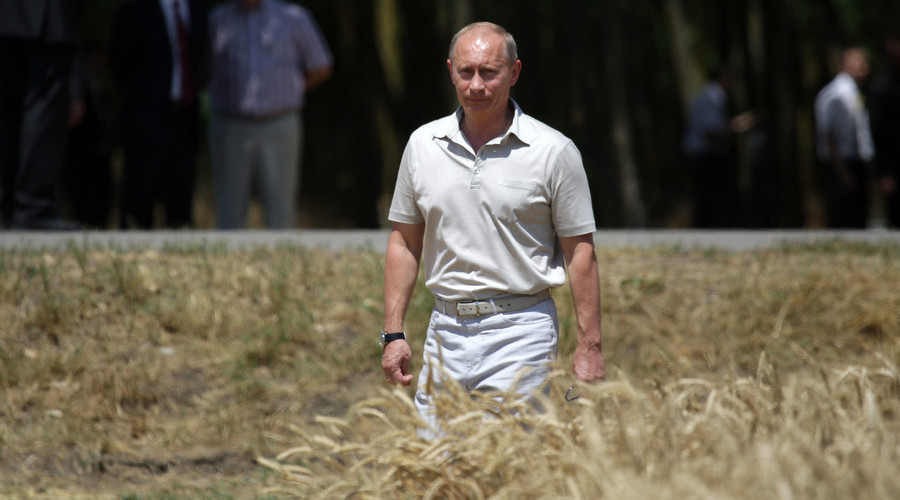 Putin wants Russia to become world's organic food superpower but first hopes to clip Turkey's wings