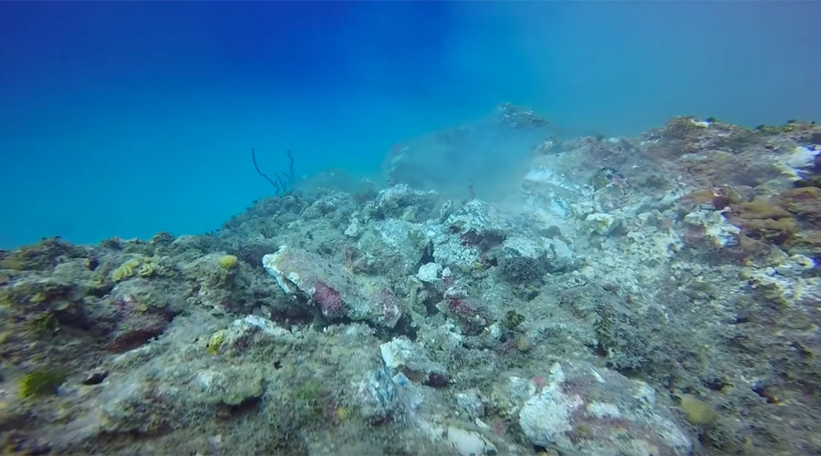 Cruise ship anchor grinds through Cayman Island reef (VIDEO)