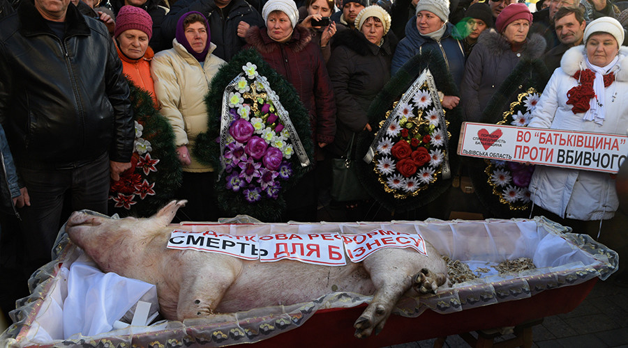Pig's funeral: Coffin brought to Ukraine parliament as hundreds protest new budget (VIDEO)