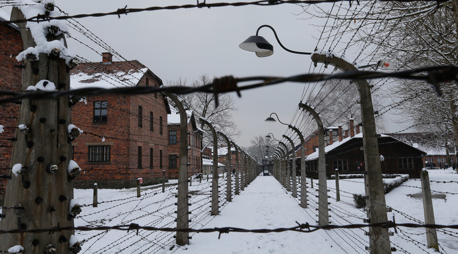 British boys accused of stealing Auschwitz artifacts 'could face 10yrs in jail'