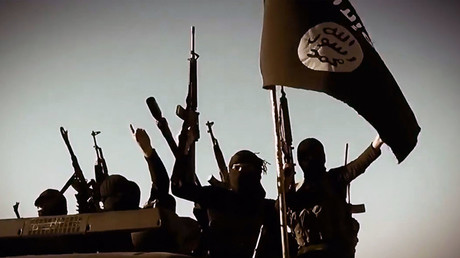 ISIS fighters' salaries halved, 'exceptional circumstances' to blame - reports