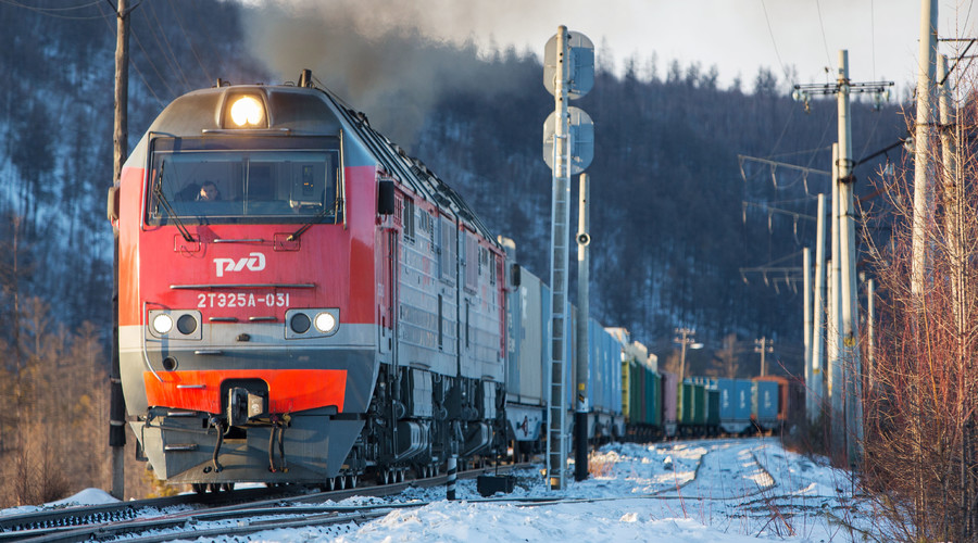 ISIS on Russian train? Alarmed passenger 'unleashes police' on Israeli man reading Hebrew book