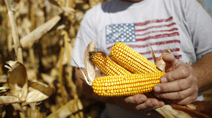 Russia may ban American corn and soybeans