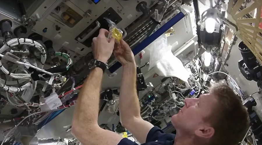Scrambled in space: British astronaut shows how to make eggs aboard ISS (VIDEO)