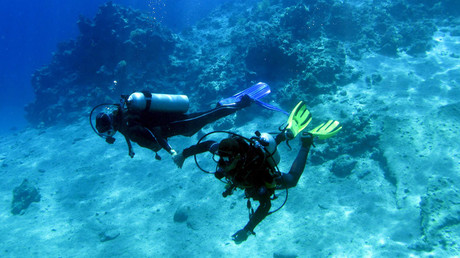 A couple dives inside the sea near coral reefs at the Red Sea resort of Sharm el-Sheikh, Egypt November 12, 2015. © Asmaa Waguih