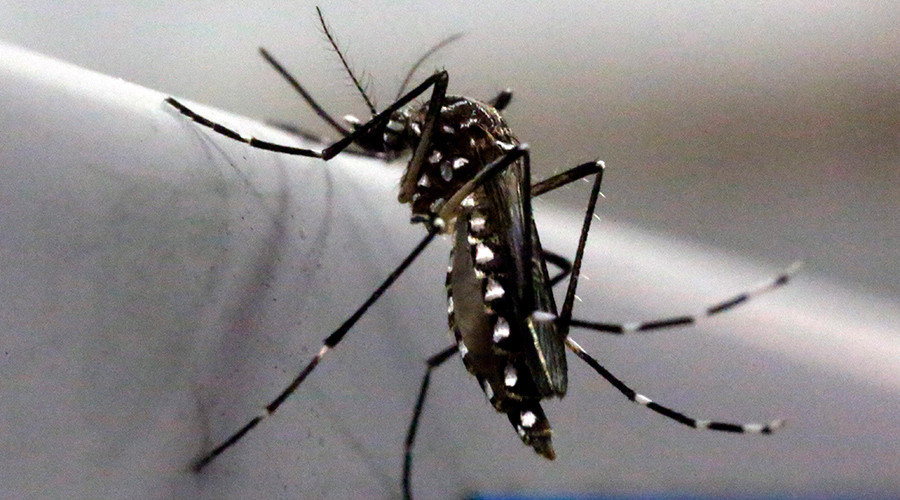 UN nuclear agency suggests using radiation to fight Zika mosquitos