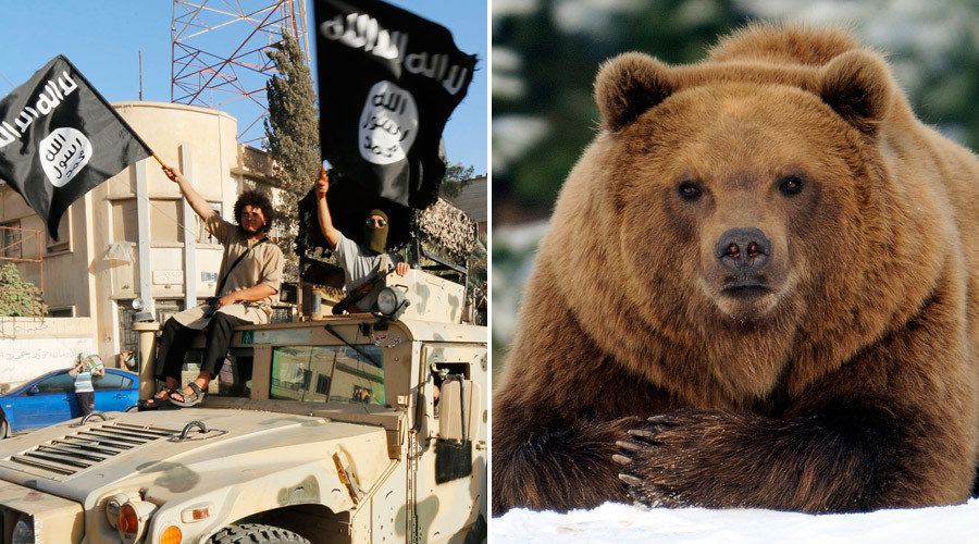 Is ISIS really shaving BEARS? How one media tweet nearly pitted PETA against jihadists