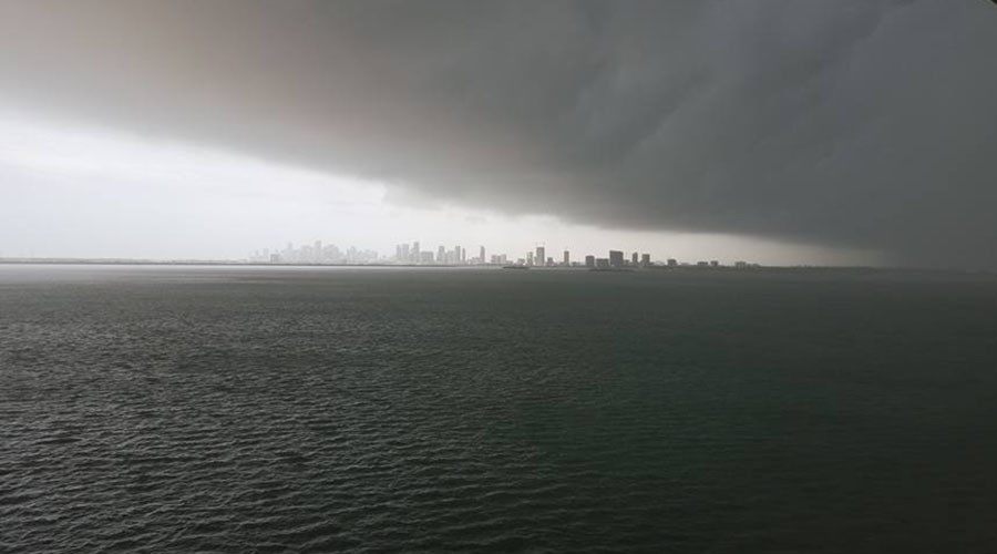 Twister mystery: Miami wakes to tornado warning and wind damage (VIDEO)