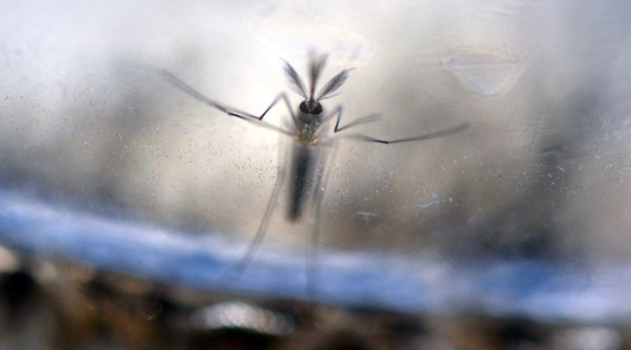 At least 14 new cases of 'possible sexual transmission' of Zika virus – CDC