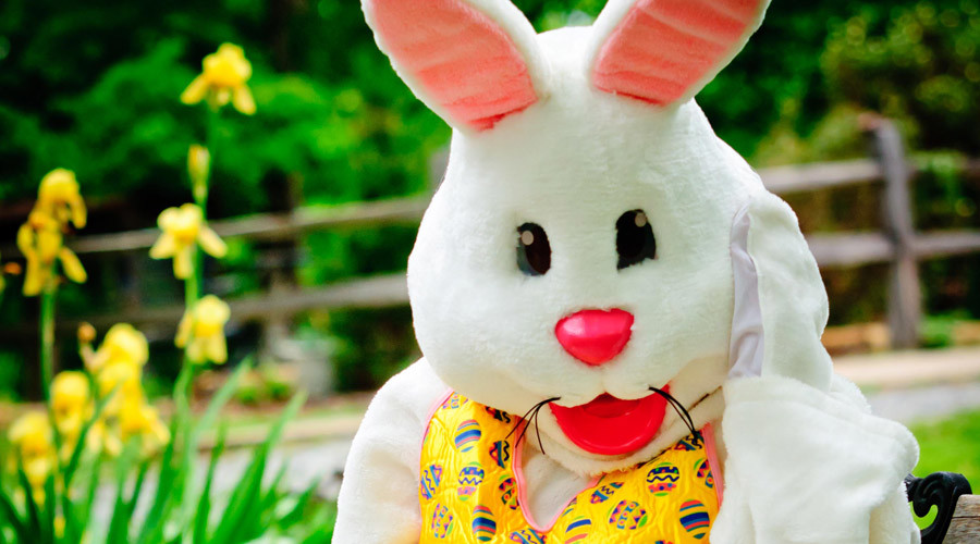 Enraged Easter Bunny throws punches in New Jersey mall melee (VIDEO)