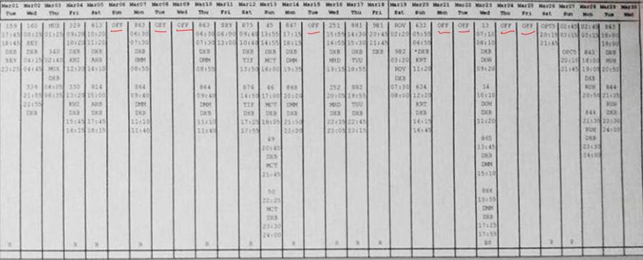 Leaked flight log of the co-captain of flight FZ981 Alejandro Cruz Alava.