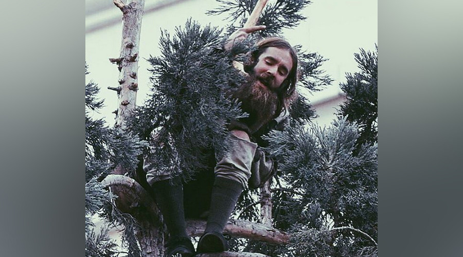 #ManInTree: Trending Seattle man finally vacates tree after 25 hours (VIDEOS, PHOTOS)
