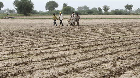 Farmers plough and sow cotton seeds in a field in Shahpur village, India © Amit Dave