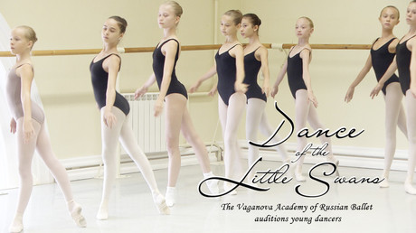 Dance of the little swans