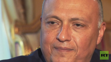 Sameh Shoukry - Egyptian Foreign Minister talks Arab Spring