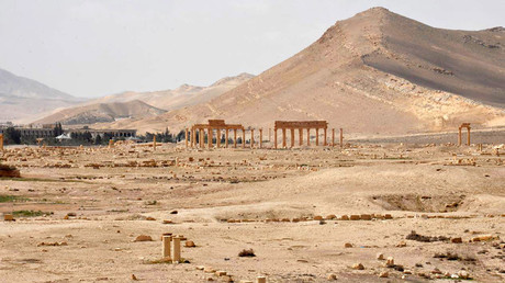 A general view inside the historic city of Palmyra © SANA