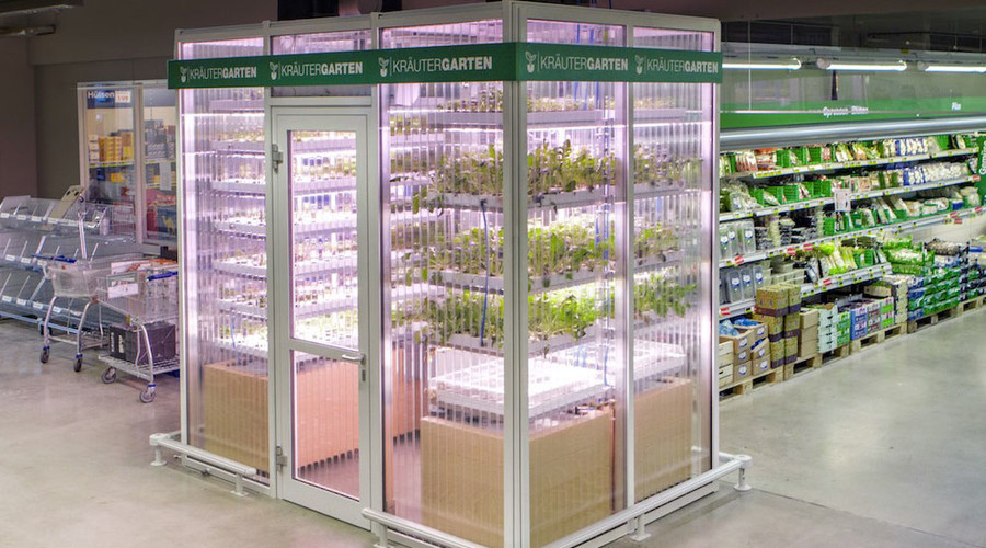 Berlin gets first taste of in-store vertical micro-farms