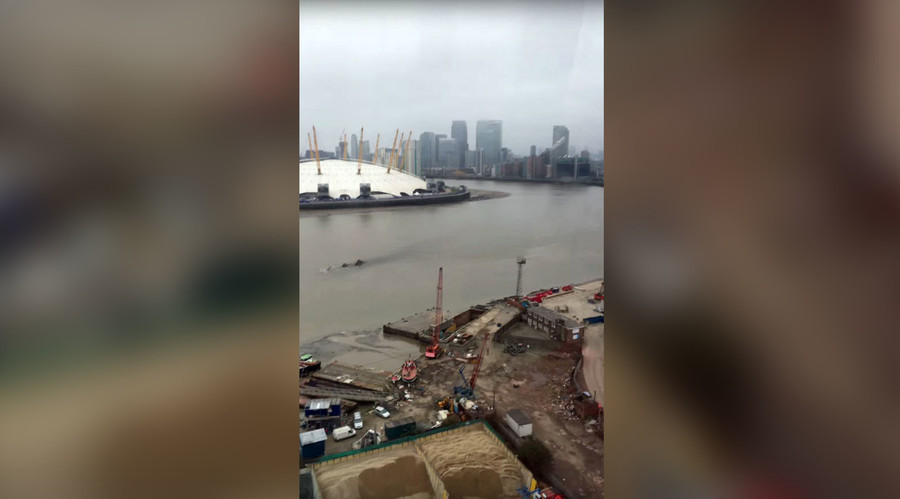Thames Monster? 'Nessie' speculation rife as mysterious creature spotted in London (VIDEO, POLL)