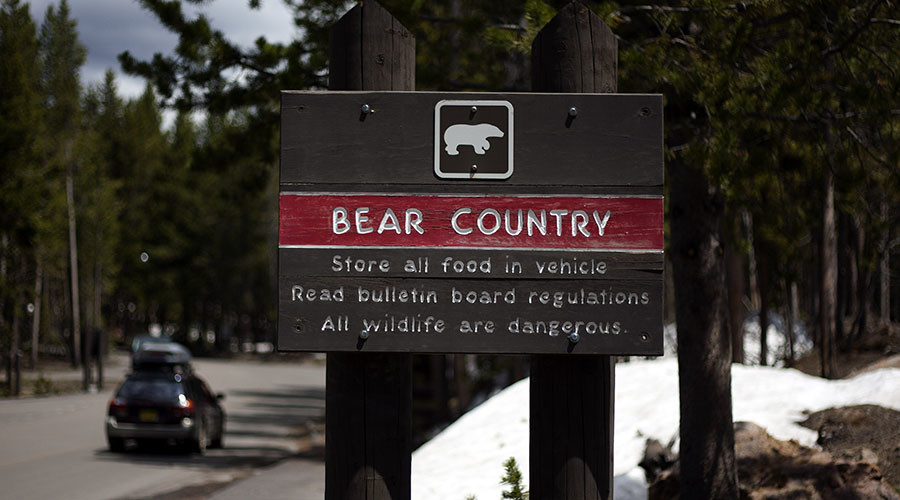 Yellowstone National Park in danger of being 'loved to death'