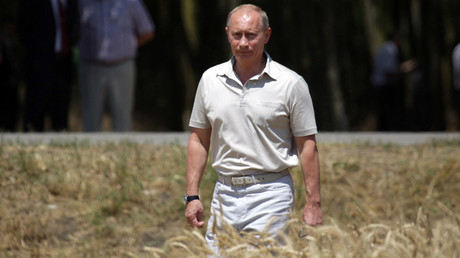 President Putin walks through wheat field in southern Russia's Krasnodar Region © RIA Novosti