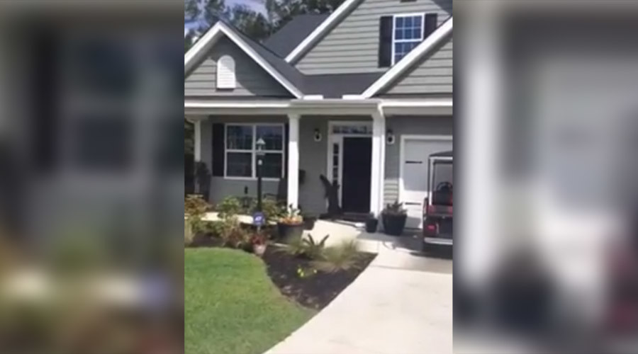 See you later: Gator caught trying to ring doorbell (VIDEO)