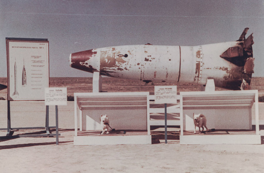 Head of R-2A missile with dogs Palma and Biter after landing © Ministry of Defence of the Russian Federation