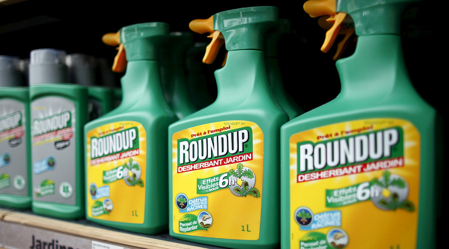 Monsanto's Roundup weedkiller atomizers are displayed for sale at a garden shop at Bonneuil-Sur-Marne near Paris, France in this June 16, 2015 file photo. © Charles Platiau