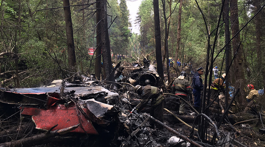 The crash site of a Sukhoi Su-27 fighter in the Moscow Region © Sputnik