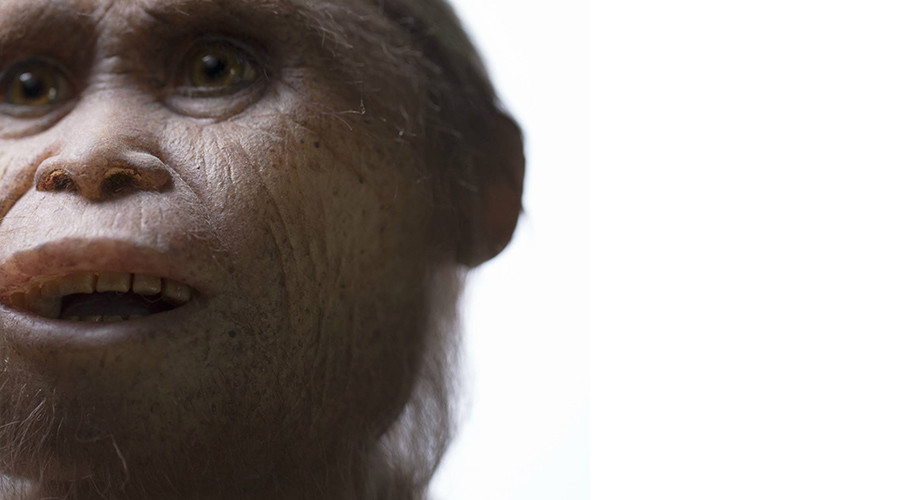 700,000-yr-old 'hobbit' fossils found on Indonesian island (PHOTOS)