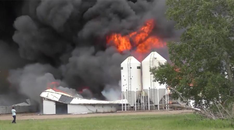 5,000 pigs burn alive in Saskatchewan barn fire (VIDEO)