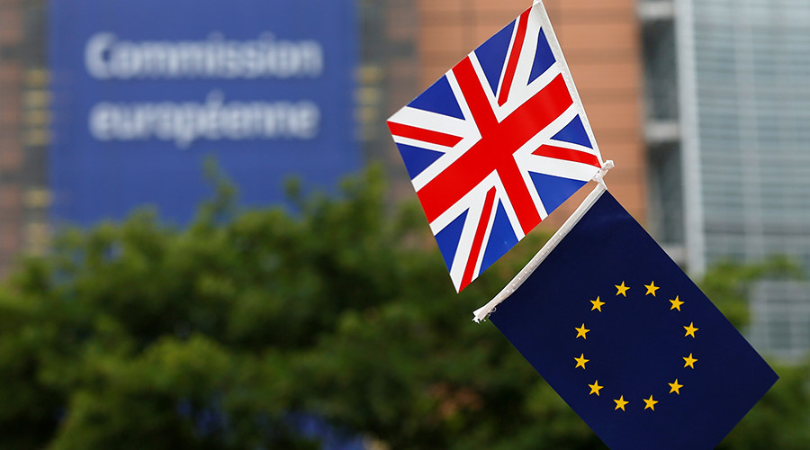 More Brussels bureaucracy: 'Brexit may take up to 10 years to implement'