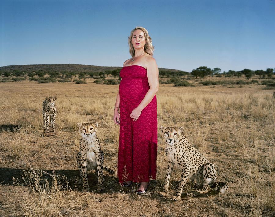 Danene and three cheetahs in Kalakwa, Namibia.