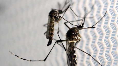 Senate Democrats block Zika funding bill over GOP provisions